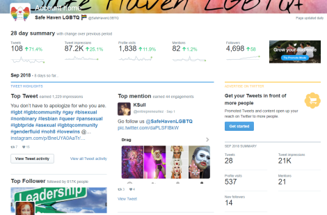 FireShot Capture 33 - Twitter Analytics ac_ - https___analytics.twitter.com_user_SafeHavenLGBTQ_home